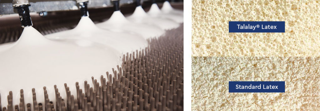Talalay® Latex