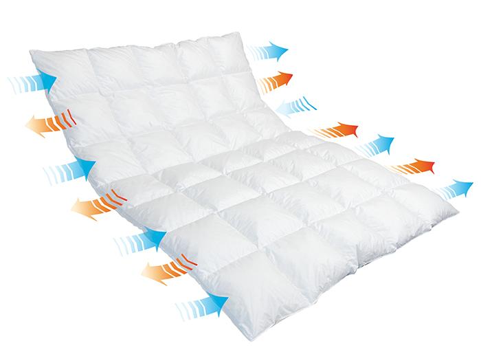 01-home-schlafen-wohnen-erkelenz-zudecke-traumina-breeze-daune-wk3